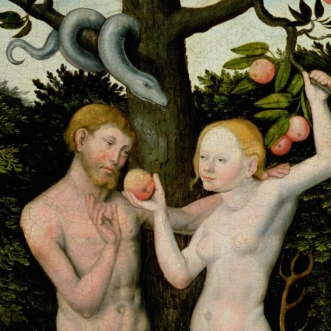 exploring the symbolism of the bibles story of adam eve and the apple What does the apple in adam and eve represent does the apple in adam and eve represent sex in the story of adam and eve-- what does the apple.
