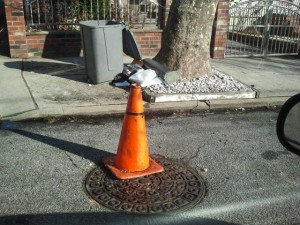 "Cones and garbage cans often mean ""don't park here"" in Queens Village Photo by Crystal Simbudyal"