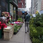 Photo by Agata Poniatowski  Flowers and plants line the sidewalks outside the remaining florists of the Flower District, on West 27th Street in Manhattan.