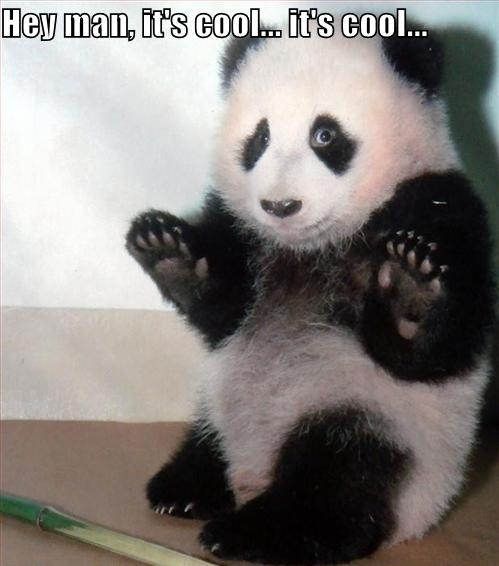 [Image: funny-pictures-panda-will-let-you-take-t...o-edit.jpg]