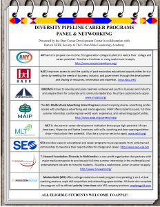 diversity-programs-overview