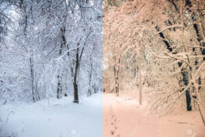 Cool vs Warm Colors