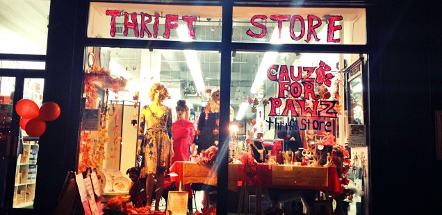 Cauz for Pawz: Gramercy Thrift Shop Bridges Fashion and Animal Rescue