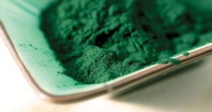 Spirulina in powder form.